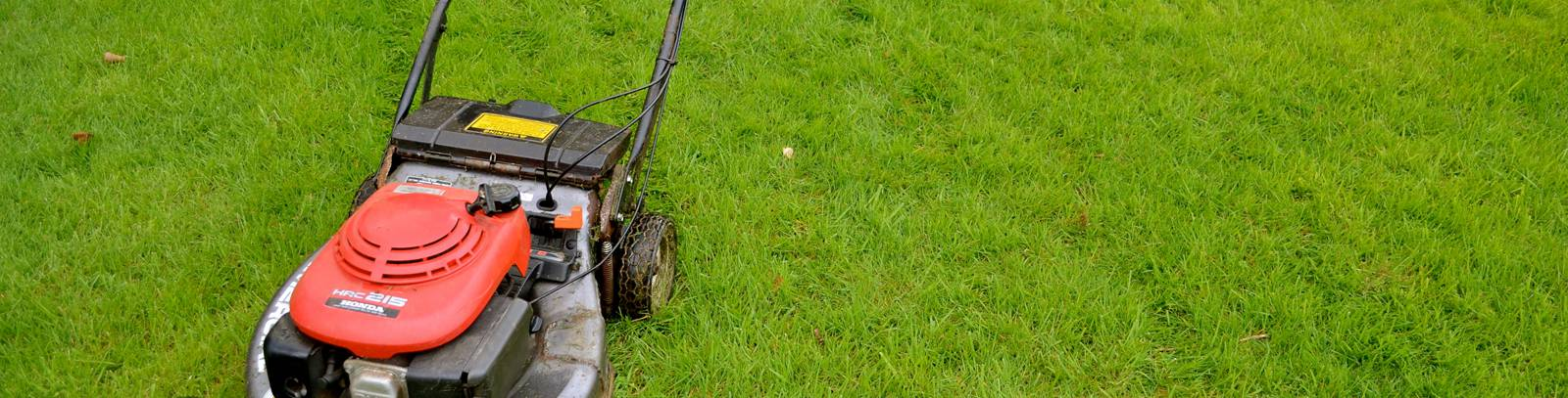 Fertilization and weed control thompson landscape for Lawn mowing and gardening services