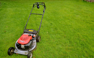 lawn care carrollton tx
