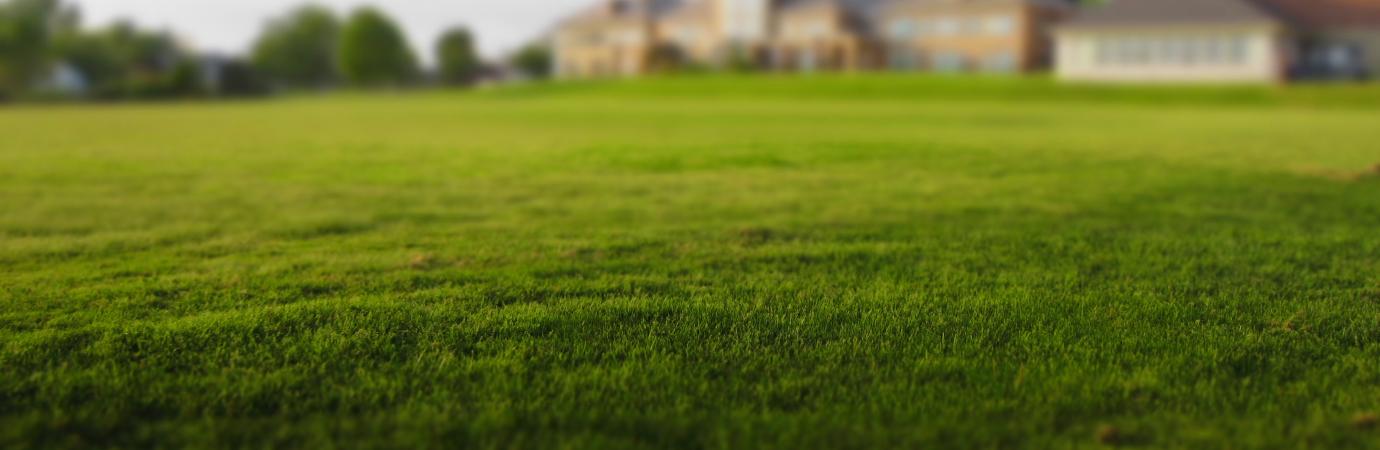 Lawn Mowing • Thompson Landscape
